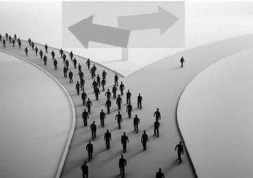 Qual caminho você escolhe?